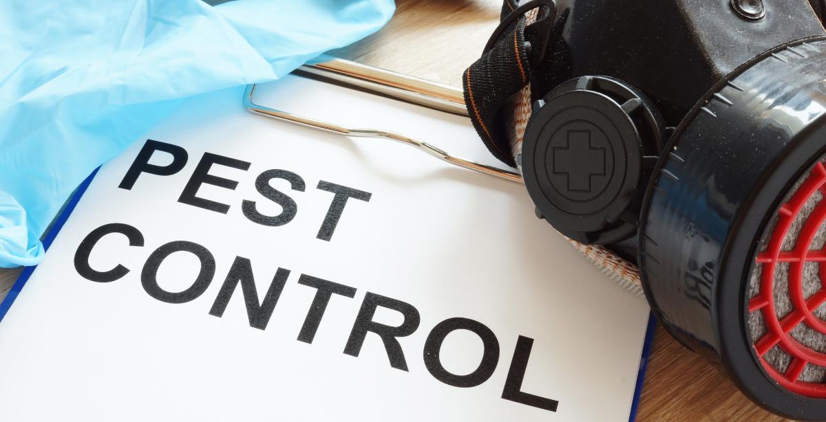 Tarsilo Control de Plagas | Pest Control